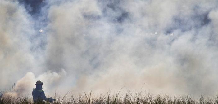 Incendio en la zona de Marismas del Odiel próxima a Corrales. (Julián Pérez).