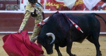 José Tomás, durante las Colombinas de 2009. (Julián Pérez).