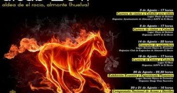 Cartel de AICAB 2011.