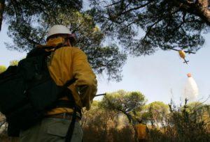 Personal de Infoca interviene en un incendio. (Foto: Julián Pérez)