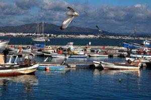 Puerto de la Isla de Culatra.