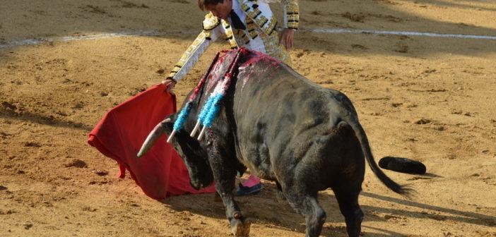 Valverde vivió una buena tarde de toros.