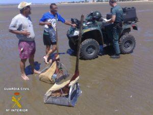 Servicio de la Guardia Civil contra el marisqueo ilegal.
