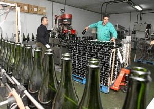 Cooperativ de vinos en Almonte. (Julián Pérez)