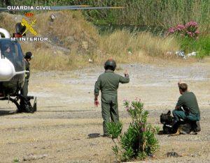 Un helicóptero intervino en la búsqueda del hombre perdido en Calañas.