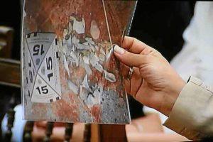 La perito 161 muestra unas fotografías que tomó en la hoguera de Las Quemadillas. | FOTO: MADERO CUBERO