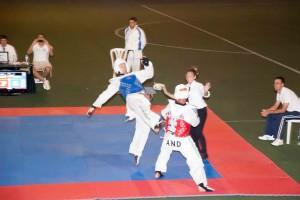 Campeonato de taekwondo.