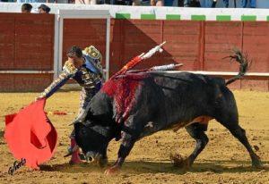 Estampa torera en la corrida a concurso de Valverde (Gilberto / ambitotoros)