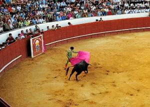 Corrida de toros en la plaza de Valverde.