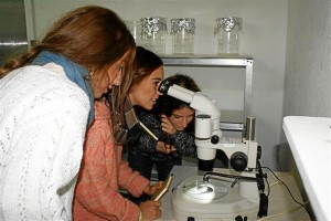 Estudiantes en el Ifapa.