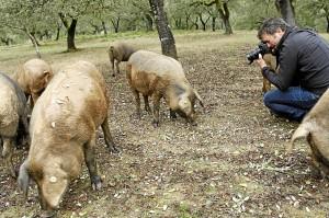 Los periodistas de Lonely Planet durante su visita a la Sierra de Huelva.