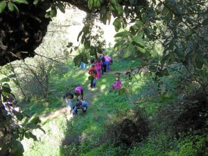 Participantes en el Aula de la Naturaleza del Parque Moret