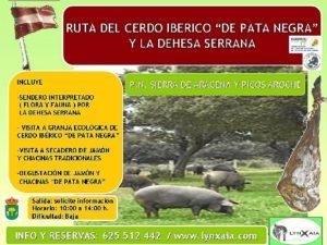 RUTA DEL CERDO IBERICO Y LA DEHESA SERRANA