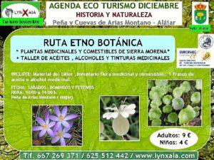 RUTA PLANTAS MEDICINALES Y COMESTIBLES