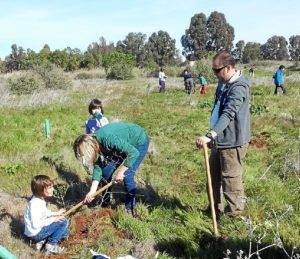 En la foto participantes del proyecto en el momento de plantar un árbol.