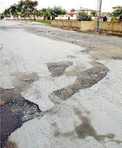 Perspectiva de un camino en El Rincón.