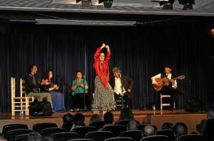 ciclo flamenco Cajasol-152