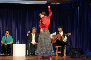 ciclo flamenco Cajasol-156