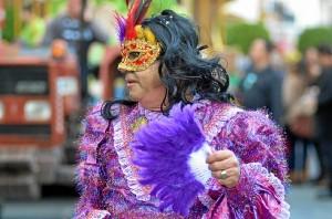Carnaval Ayamonte 2014-cabalgata-6