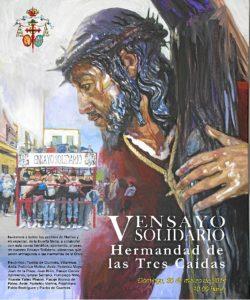 Cartel V Ensayo Solidario 2014 media