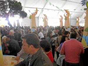 Turismo Feria Gamba Domingo (5)