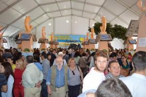 XX Feria de la Gamba (1) (Copiar)