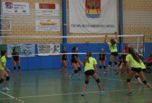 Campeonato de Andalucía de voleibol femenino.