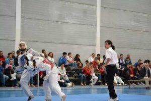 Campeonato de Andalucía de taekwondo.