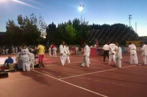 Exhibición de taekwondo en La Palma del Condado.