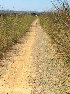 Vía verde
