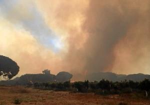 Incendio Cartaya1 (2)