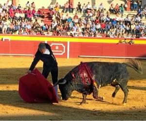 (Foto: ambitotoros.blogspot.com)