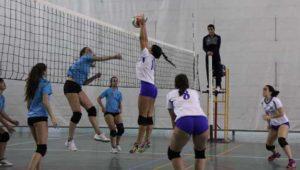 Torneo de voleibol femenino.
