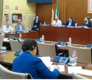 Plataforma Recupera Tu Ria en Parlamento Andaluz01