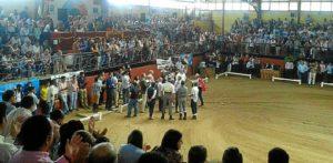 Almonte (Campeonato Doma Vaquera 2013)