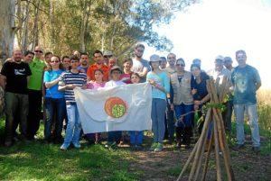 Plantacion Arroyo de Tejada