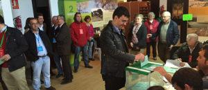 mario jimenez votando autonomicas 2015-8303