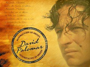 david palomar-1
