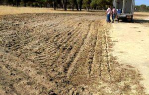 emigrantes problemas tractor-3557_n