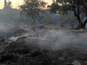 incendio Lucena3