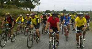 Ruta cicloturista Pinares de Cartaya.