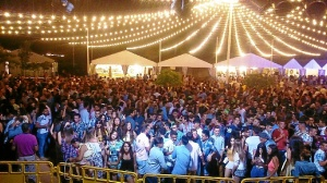 Fiestas patronales San Juan