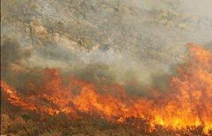 Incndio forestal