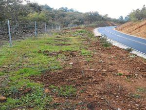 carretera los romeros-jabugo- 11