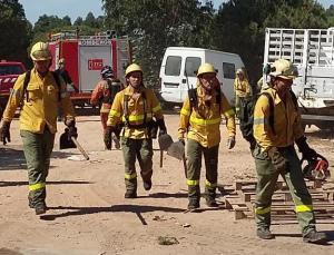 Efectivos del Infoca se disponen a actuar en el incendio de Palos.