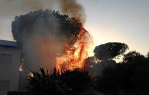 Imagen del incendio registrado en El Picacho (Mazagón).