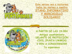CARTEL STAND Y MERCADILLOS VERANO 2015