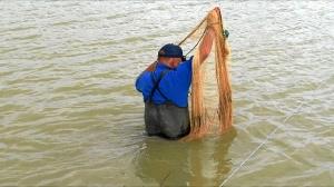 El chef del mar pgm pesca de estero-8