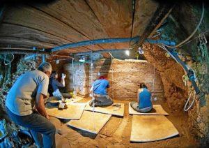 Excavacion Vanguard.