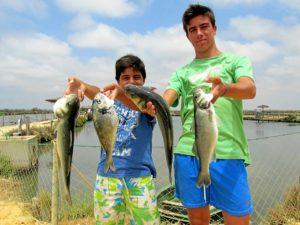 Pesca Salinas del Astur Verano 2015 (2)